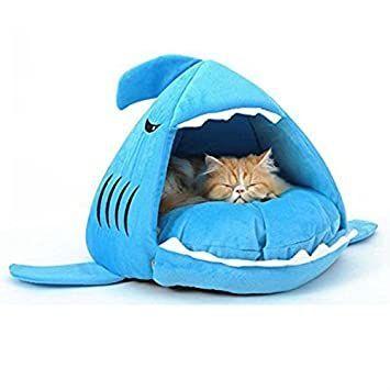 φ(・ω・ ) 【デザインハウス】  猫のためのですが。