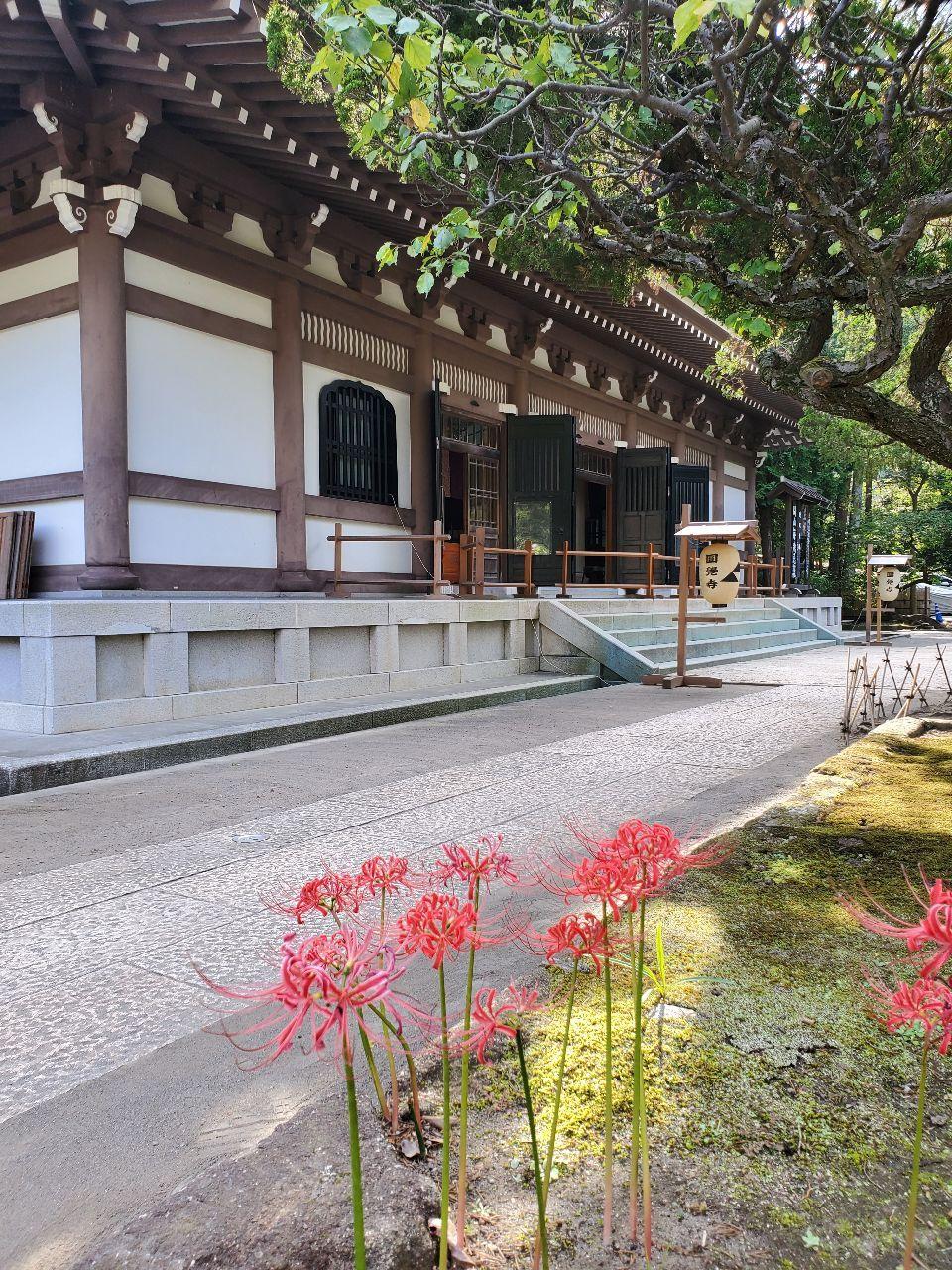 株・夢 & 日常会話、いろいろ 写真は、円覚寺です。
