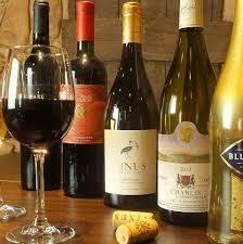 8186 - (株)大塚家具 KUMIKOって、ワイン好きみたい。 今晩、ボクもワインを飲むのだ。 乾杯!  ウンウン!