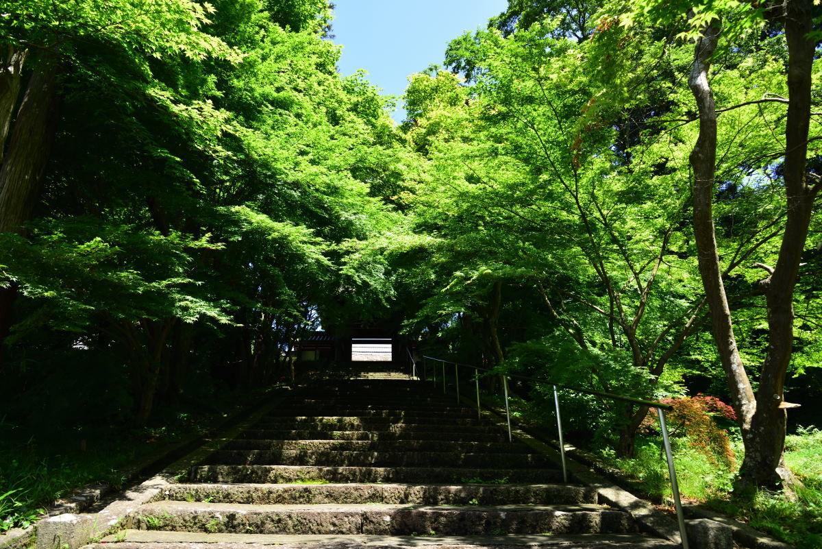 川西市周辺で女友達&彼女になってもいい方いませんか~ 綾部・安国寺です。 昔、テレビアニメ「一休さん」に出てくるお寺さんは、ここのお寺さんのようです。 実