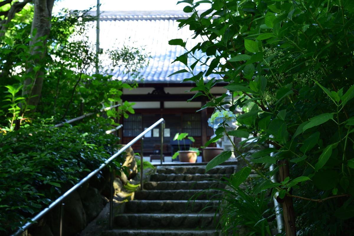 川西市周辺で女友達&彼女になってもいい方いませんか~ 川西市 「頼光寺」に紫陽花を撮りに行きましたが、まだ早かったようです。 前回投稿した「文化財資料館」