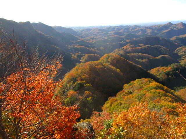 御岳山へ レッツらGO! 紅葉も良かったですよ。。。(*^_^*)