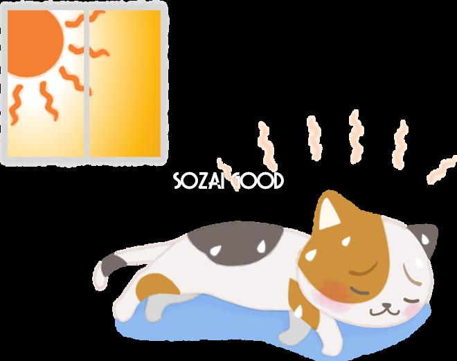 株の大勝会(会員制) おはようございます!  今日も暑くなりそう。真夏日になるそうな。  ところで、千葉県にお住まいの会員
