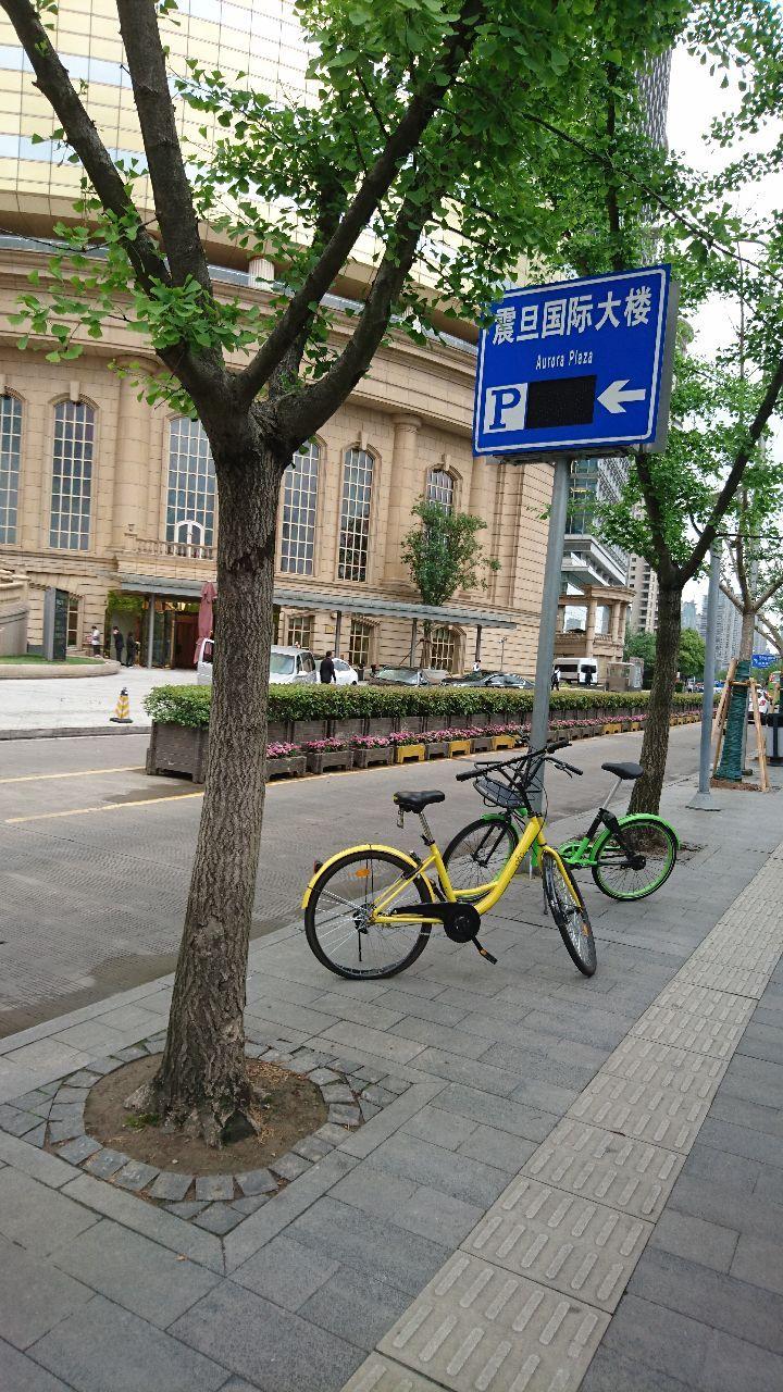 3775 - (株)ガイアックス 上海のビジネス街周辺は、自転車シェアも一般的に利用されています。私は利用したことはありませんが・・・