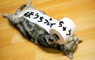 3932 - (株)アカツキ ドッカンバトル2億ダウンロード記念フェスは明日からでしたっけ?  最後のふるい落としやん(笑)