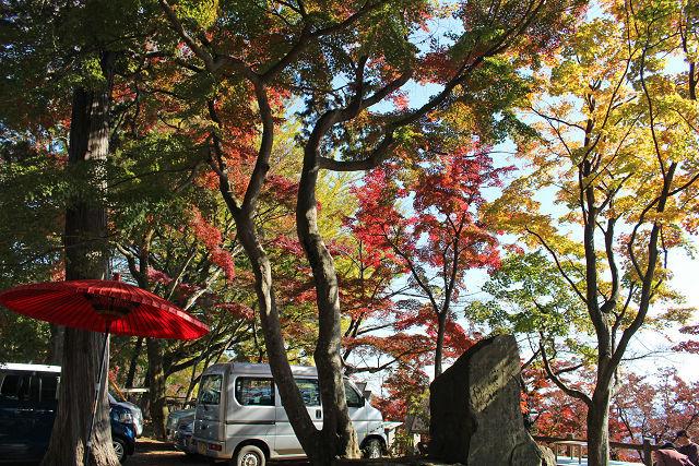 出会いたいなあ aoiさん、こんにちは! 袋田の滝や竜神峡(竜神ダム)は何度か行っています。 吊り橋からの景色は最高