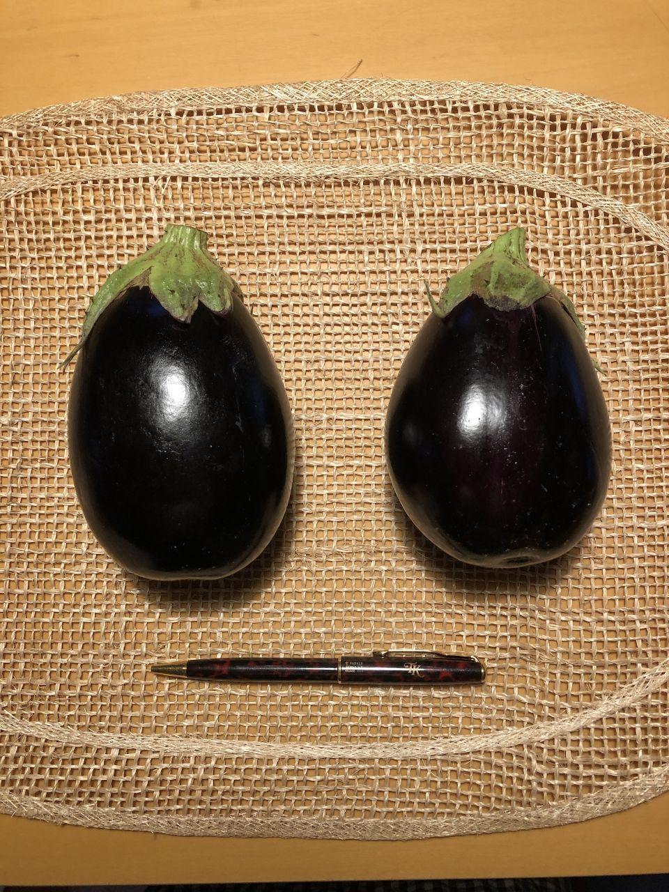 まったりトレード 悪いこと睨みをきかすぞ!  米茄子、初収穫。
