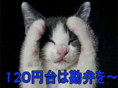 6628 - オンキヨー(株) 120円台も夢じゃない! 違うだろう上向き200円台だろう! もし、明日、赤なら、春なのに冬眠します