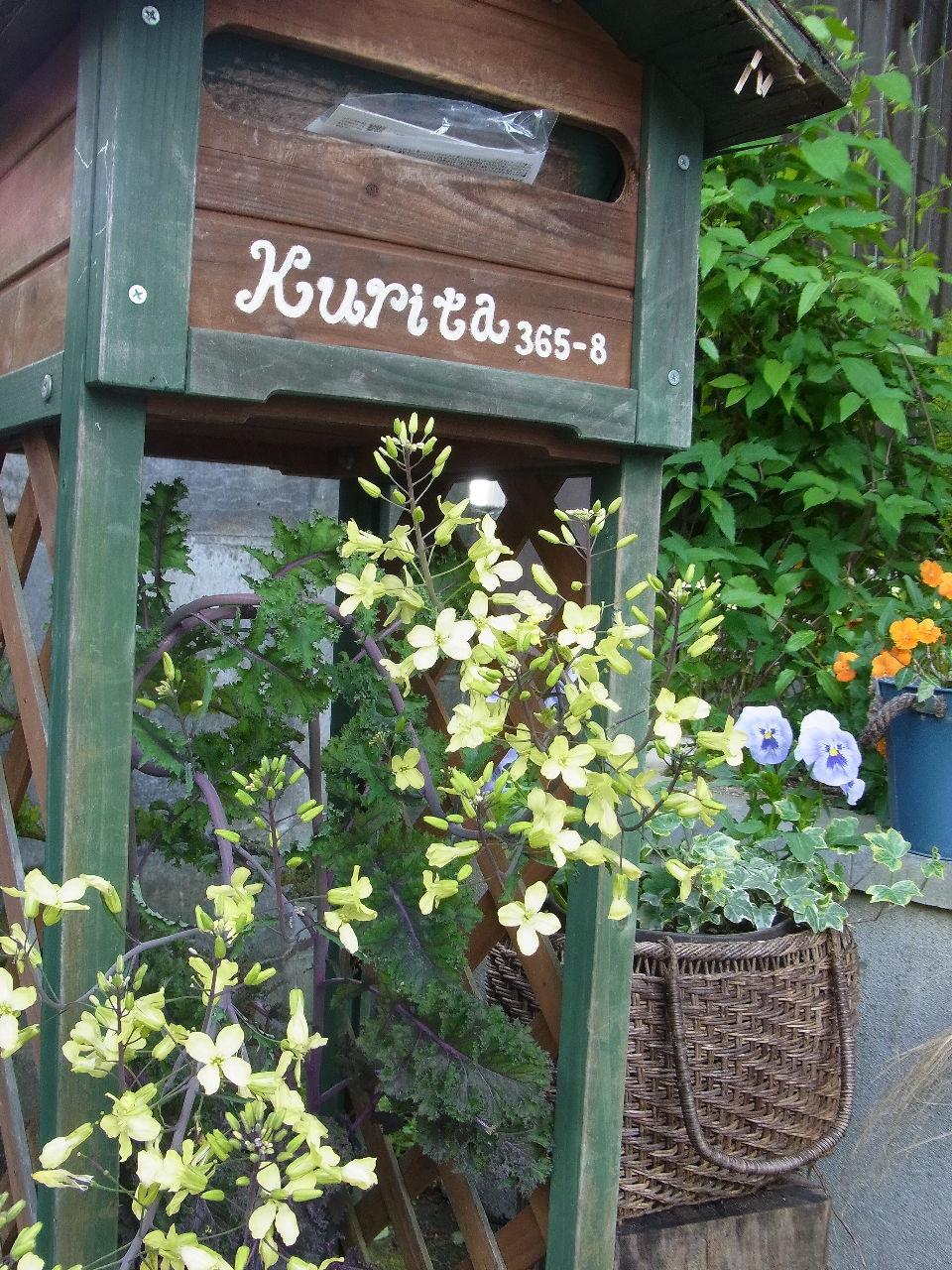 6079 - (株)エナリス 今夜も。。。。。。。。。。。。。能天気でJAZZがいい! ※来月から。。Carexが。保護司推薦だっ