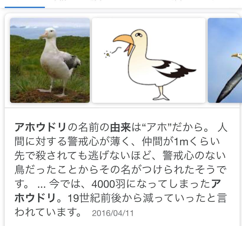 4563 - アンジェス(株) トンビに失礼です😰 こっちの鳥がピッタリです🙇♂️