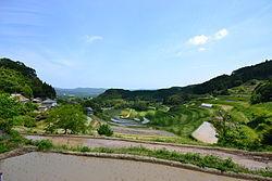 3350 - (株)レッド・プラネット・ジャパン 凄いニュース流れてるわ。 岡田氏が底値で仕込んでるとしたら最高の相場になりますよ。   「日本のカジ