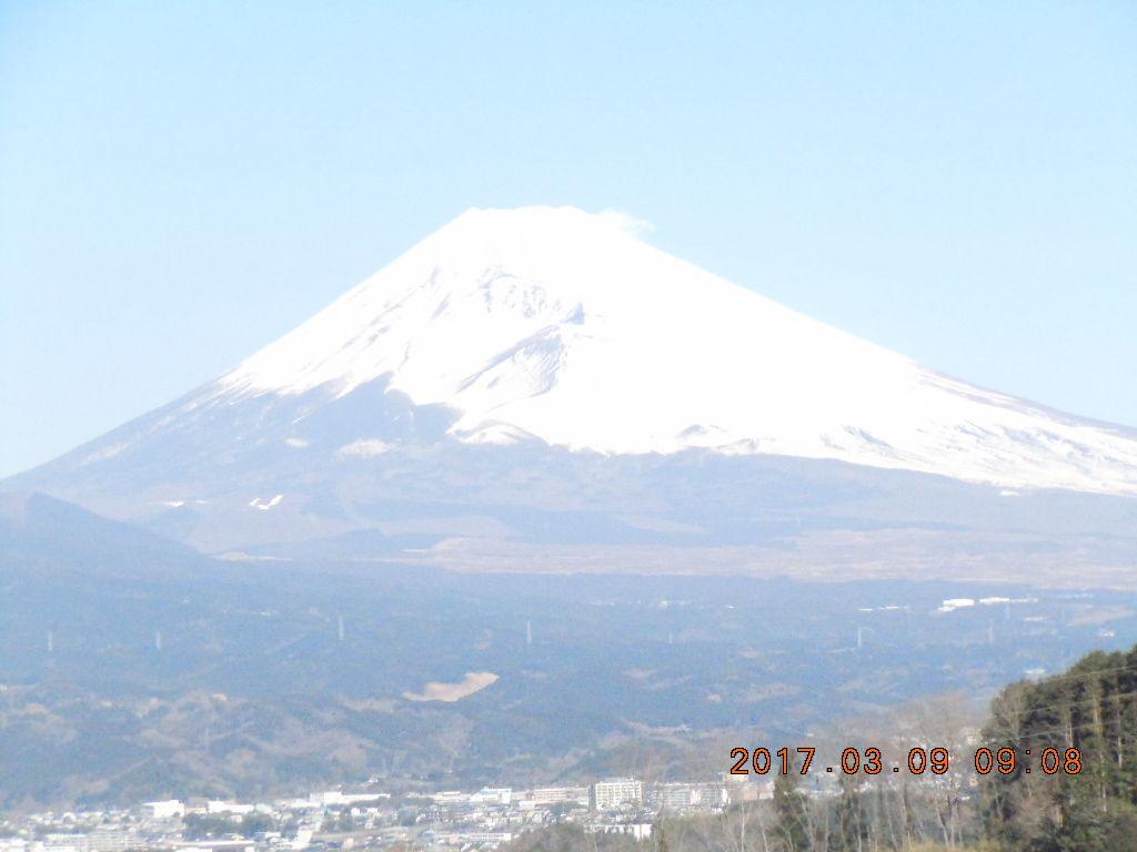 走った後のビールはうまい!! 数々の野鳥の画像、簡単には撮れないね。カッコいいよ ヤスは相変わらずの富士山です。