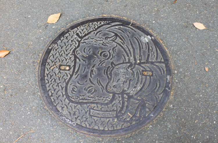 8789 - フィンテック グローバル(株) これ、愛知県の、のんほいパークのやつです。 苦情が来るまで使わせて貰うのどうですか?