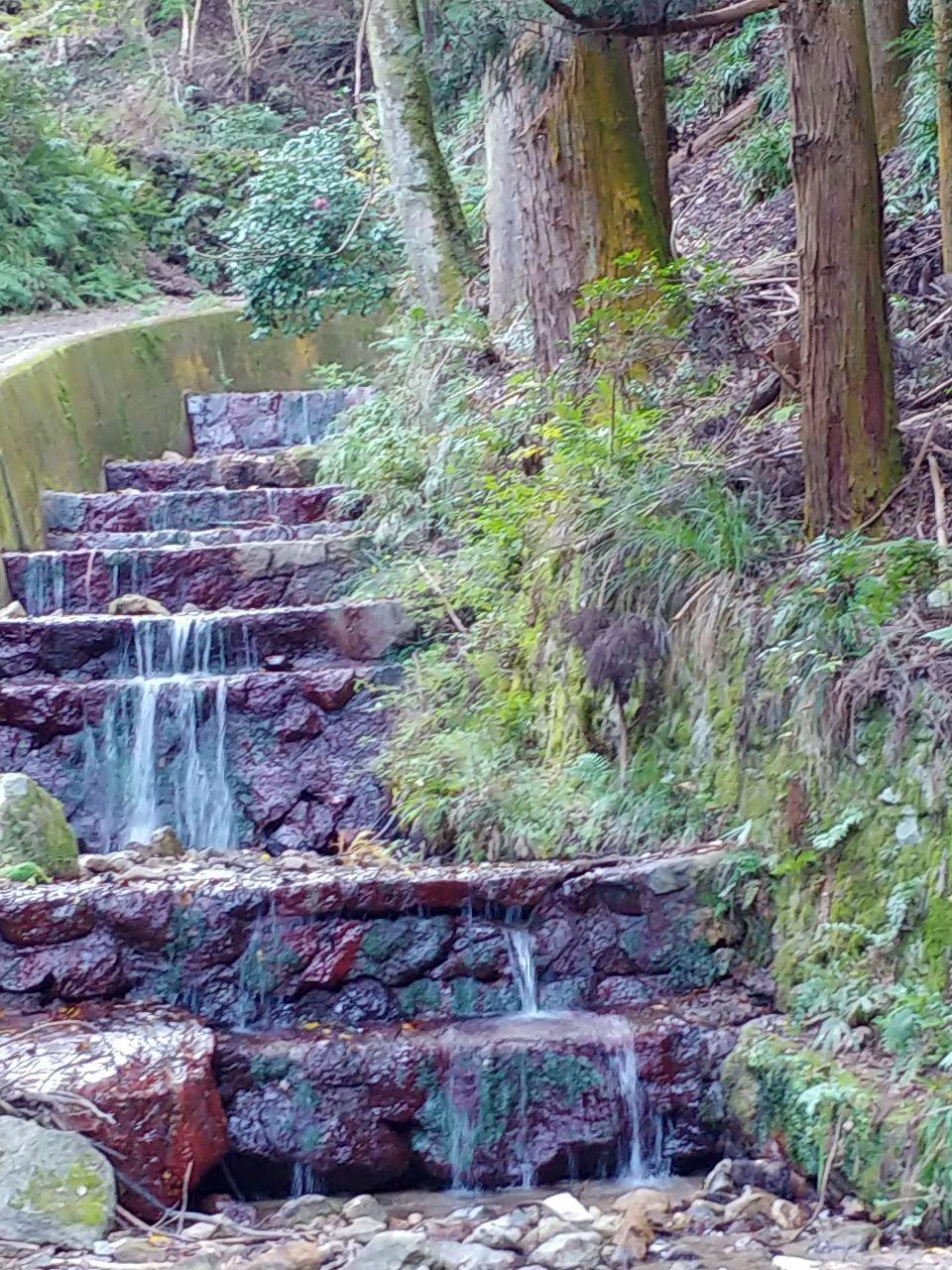8789 - フィンテック グローバル(株) どうも💞 ここが先程通った銀閣寺裏にある山道の澤ですお気に入りスポット🌄