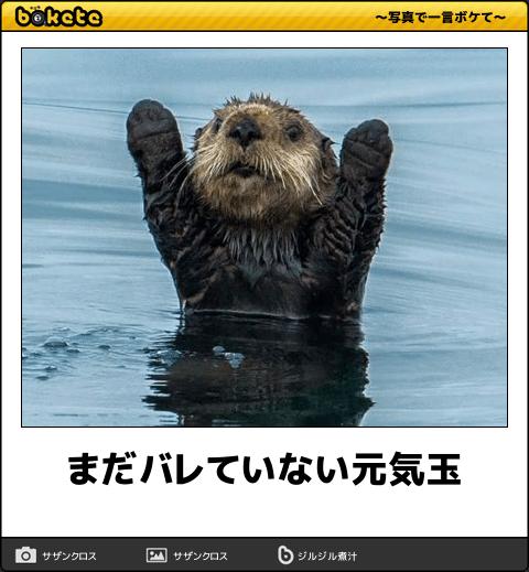 5950 - 日本パワーファスニング(株) ほああwww(爆)
