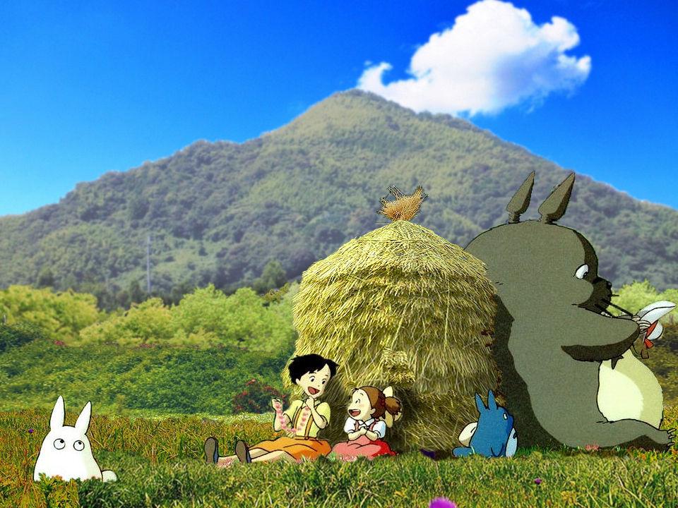 鹿児島大隅半島に お住まいで60才以上の方。 ★コウダ様★はあ様★明様★ヒダカ様★星空様★   台風が来る前に花壇を養生しませう  折角 そこまで