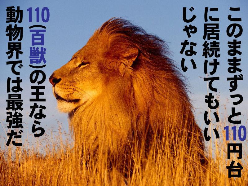 株式投資 企業情報メモ-001 FGI編 もう7日も終値110円台。 そんなに110円台が好きなら↓