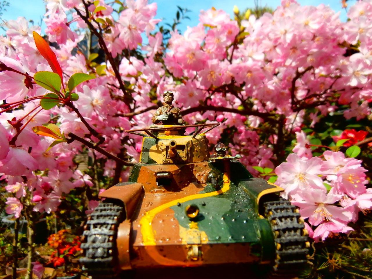 龍神の棲家...。oо○**○оo。... われらがチハたん 正面から  主砲は57ミリだが貫通力でドイツ軍の2号軽戦車の20ミリ砲にも劣るらし