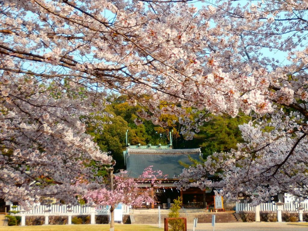 龍神の棲家...。oо○**○оo。... 異様に美しいが人が居ない護国神社