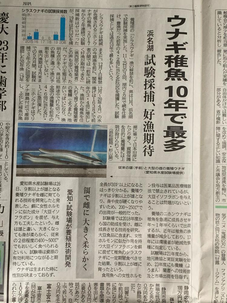 2395 - (株)新日本科学 昨日の静岡新聞の記事です。 ウナギ養殖について。 大豆イソフラボンを入れた餌で、養殖したウナギの9割