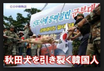 ^KS11 - 韓国 総合 どうして韓国人は激しいんでしょうね~ 犬を食べるから?