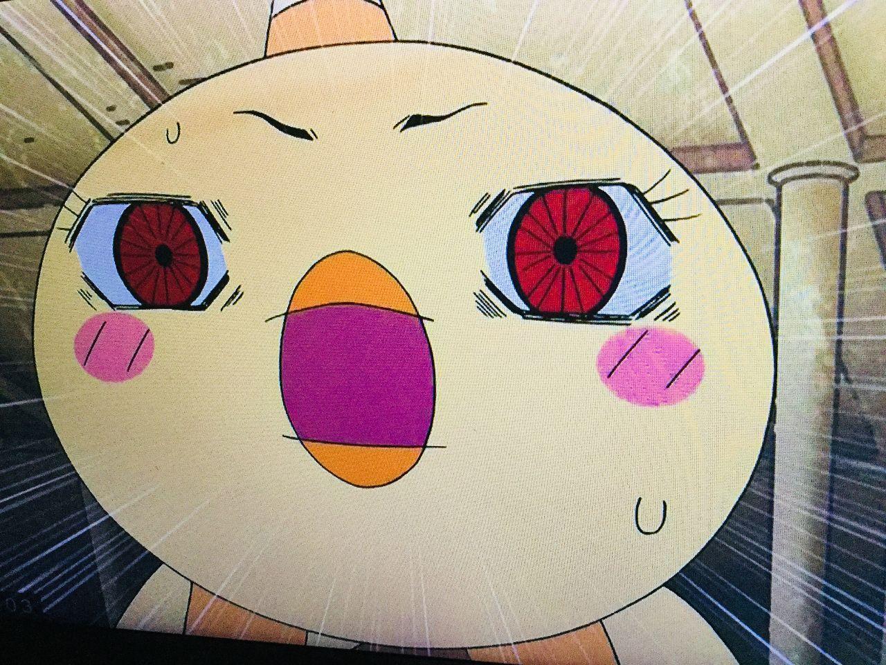 usdjpy - アメリカ ドル / 日本 円 アンケート結果見てかけてる人が結構いるみたいダッピ。オラビックリしたッピ。