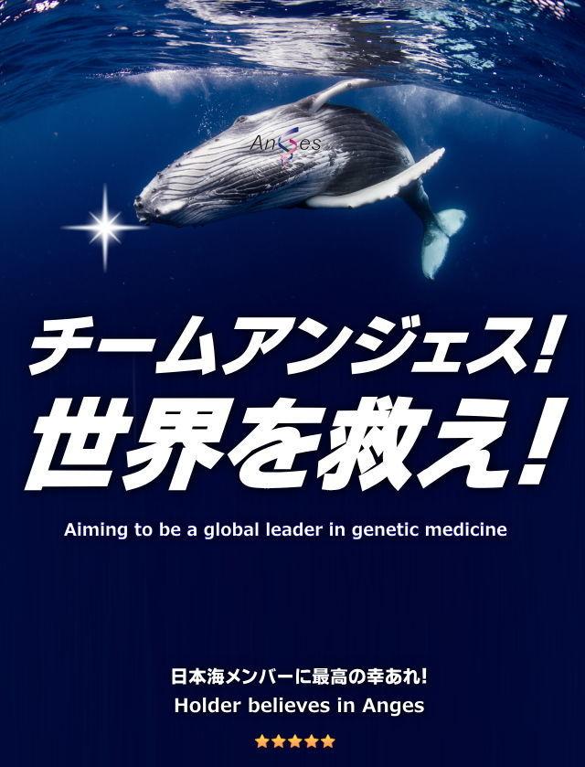 日本海 日本海のみなさん、おはようございます。アンジェスの成功を信じて今週も全力応援!頑張れ、チームアンジェ