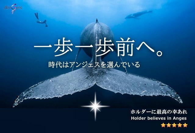 日本海 頑張れ、チームアンジェス!