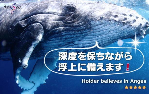 日本海 日本海のみなさん、応援お疲れ様でした。ラムッキーさん、有益な情報ありがとうございます。鷹司令官、浮上
