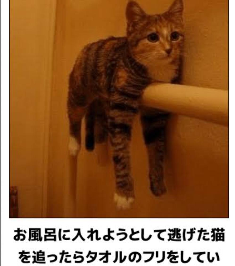 3911 - (株)Aiming にげろ~