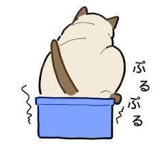 ハッピーちゃんの独り言☆ さて(T ^ T)  猫ちゃんが、お父さんの座布団に たくさんシッコをしてしまいまして。  先週くら