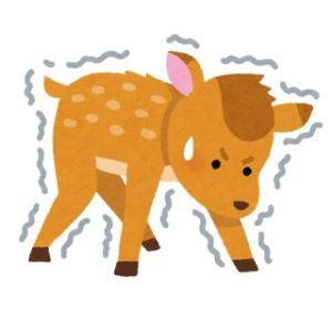 ハッピーちゃんの独り言☆ お盆休み明け、2日間、仕事終わりました (T ^ T) 仕事終わり、生まれたての子鹿のように 足がブ