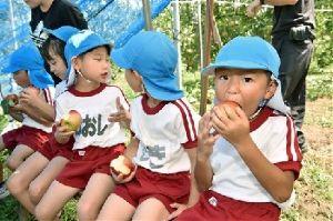 熊本城 歴史の1ページ。今だから見に来て欲しい!! 園児がリンゴの収穫体験 阿蘇市の観光農園  2016年08月23日    もぎ取ったばかりのリンゴを