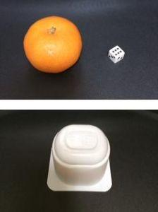 透視・予知・実験 では問題です。  用意したもの(画面上部) ・みかん ・サイコロ  このうち一つに、ヨーグルトの空き