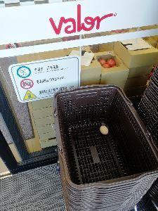春日井市民集合! 先日、勝川のバロー行ったら・・・ 基本、パック詰めの卵しか販売されていないのに、どうして1個だけ転が