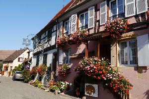 リュウネブルグが大好きです ヘンリーさん 窓辺の花ですが。 これはコルマール近郊のリクビルだったと思いますが街のお花の写真です。