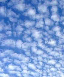 芭蕉から文月まで     「鰯雲」         逝きし人偲ぶひととき鰯雲    風船