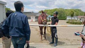 栃木からダービー馬を 今日は、いわきの馬の温泉に行ってきました❗ もちろん、ボールライトニングのお見舞いです(^_^)