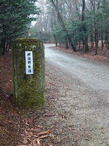 栃木からダービー馬を お出かけ先から、ちょっと足を延ばしたら…  那須野牧場の前に(^_^)  阪神競馬場の