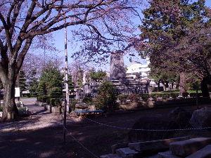 豊川歳時記 桜ほころぶ 昨日は老人会の総会だった、またまた人がへって25人しか集まらなかった 以前からにると3分