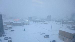 シェンクリンはじめました なんとか無事に試される大地に来ました。 予想以上に雪が多いです。なんでも例年以上とか…