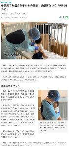 6291 - 日本エアーテック(株) 【神奈川でも増える子どもの感染 治療薬乏しく「長い闘いに」】 神奈川新聞 | 2021年9月19日(