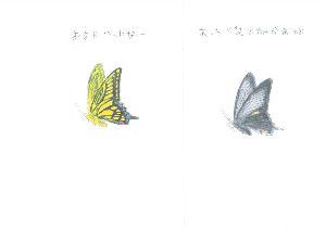 広島に住んでいます ┳┻|   ┳|_∧   ┻|ω・)    アゲハ 5     あっちに花畑があ