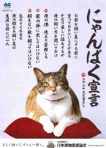 ♪株喫茶♪ 【ネコは今日も~】 仕事でありんした・・ もちろん訪問先エリアの神社に参拝してきマスタ~ 昨日は地元