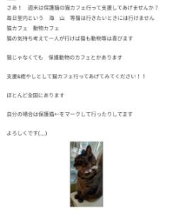 6920 - レーザーテック(株) 🐭🐭🐭🐭🐭