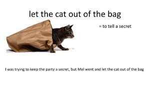 サンディエゴへいらっしゃあい♪ to disclose a secret―let the cat out of the bag
