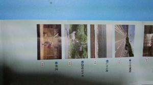 000001.SS - 上海総合 二連発です
