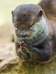 5341 - アサヒ衛陶(株) なにも出てないようだけど、動いてるからちょっとだけ・・ トイレの神様お願いします<(_ _)&