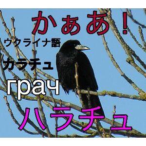 日本語の起源 ニャ^_^