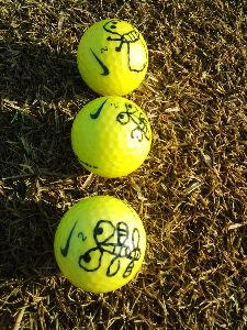 _/~~~ シニア・ IN 兵庫。 3月 4日。   グランドオークゴルフクラブ  皆さま お疲れさまでした。  晴れたり曇ったり 少し